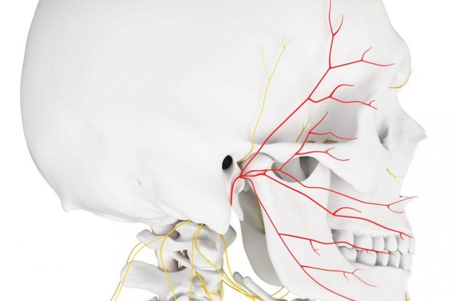 Nici PDO w korekcie porażenia nerwu twarzowego