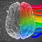 Zachowania klientów w świetle wiedzy o mózgu