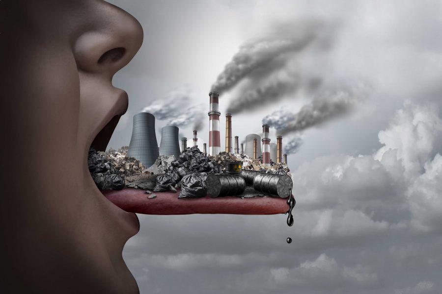 Toksyny – jak  wpływają na nasz organizm i wygląd? (cz. 1)