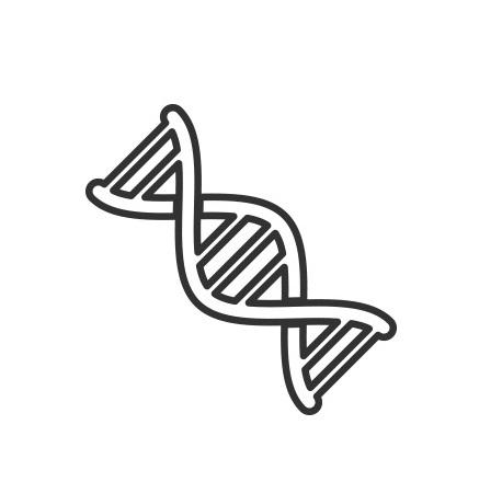 stymulatory w dermatic, jaki wybrac stymulator, oferta stymulatorów , czym się różnią stymulatory, ejal, profhilo, nucleofill, venome, peptydy, polinykeotydy, produkty do biostymulacji, najczęściej zadawane pytania o stymulatory tkankowe w dermatic